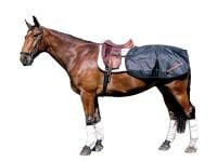 Back on Track® Equine Loin Rug/Quarter Sheet