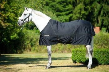 Back on Track® Equine Mia Mesh Sheet