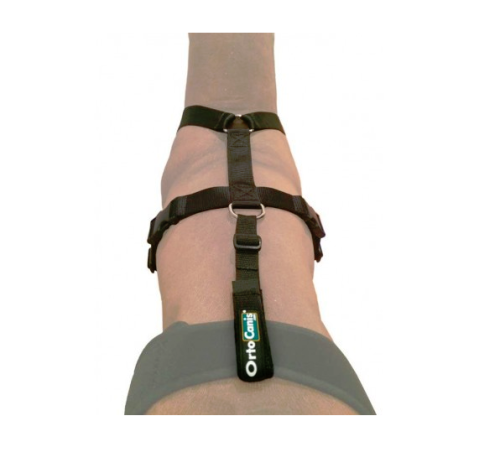 Ortocanis Fix Belt & Harness Combination