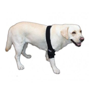 Ortocanis Canine Elbow Brace