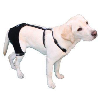 Ortocanis Canine Hip & Back Brace