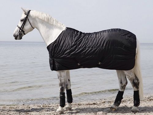 Back On Track® Equine Mia RIME Rug