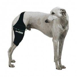 Ortocanis Canine Knee Brace