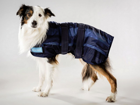 Cool on Track® Canine Cooling Coat