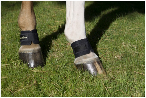 Back On Track� Equine Pastern Wraps