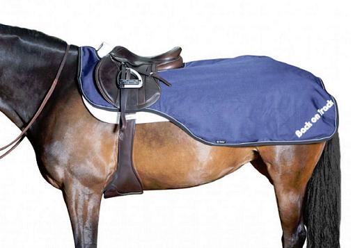 Back on Track® Equine Exercise Rug, Sammy