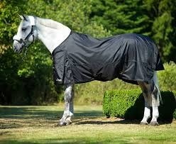 Back on Track® Equine Rain Rug