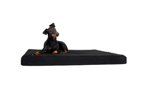 Back on Track® Canine Mattress, Standard