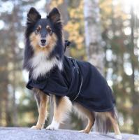 Back on Track® Canine Mesh Sheet, Classic