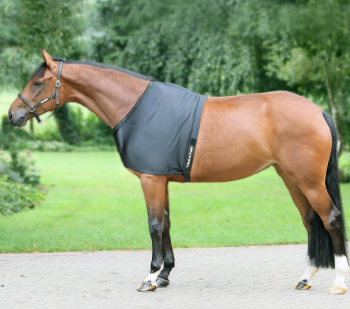 Back on Track® Equine Shoulder Guards (Original and Light)