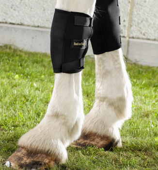 Back on Track® Equine Knee Boots