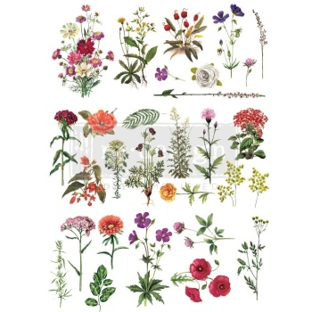 Decor Transfer - Floral Collection