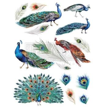 Decor Transfer - Peacock Dreams