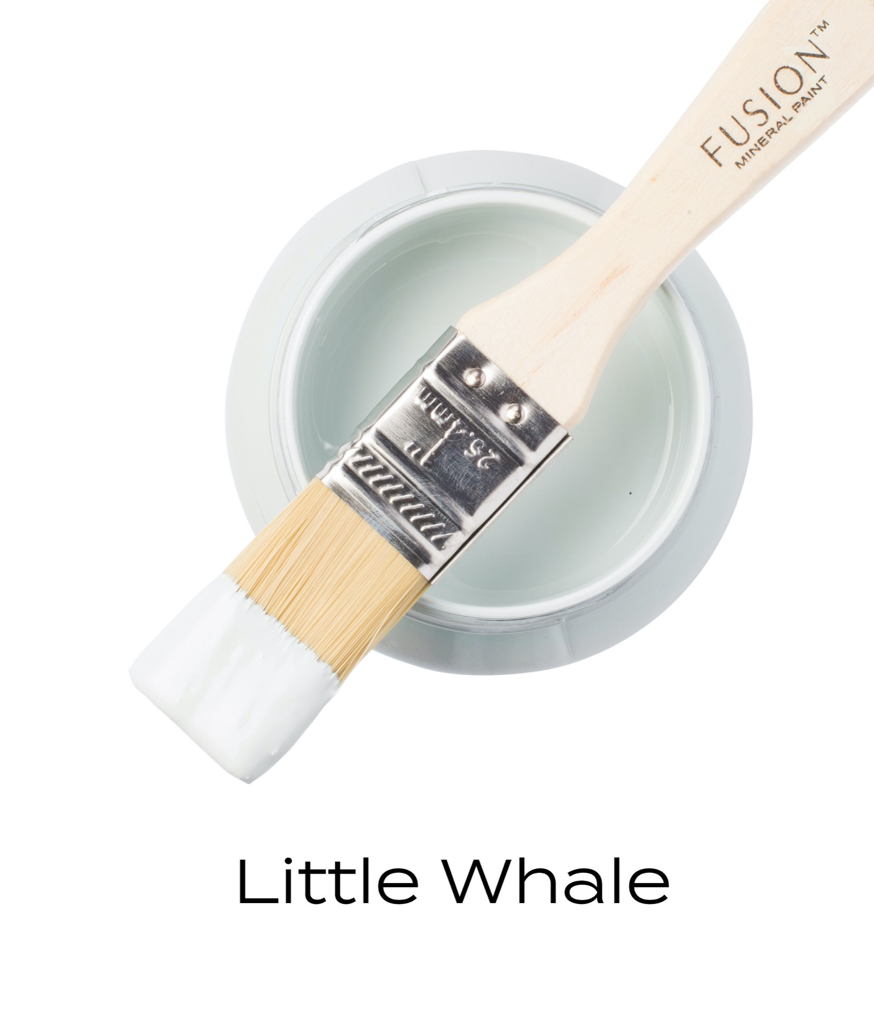 T1LITTLEWHALE