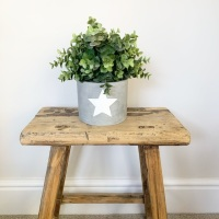 Concrete Planter/Container