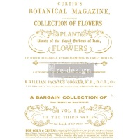 Decor Transfer - Flower Collector