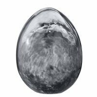 Murina Egg
