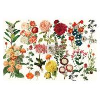 Decoupage Tissue Paper - Forest Garden