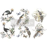 Decor Transfer - Rare Birds (Small)
