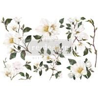 Decor Transfer - White Magnolia (Small)