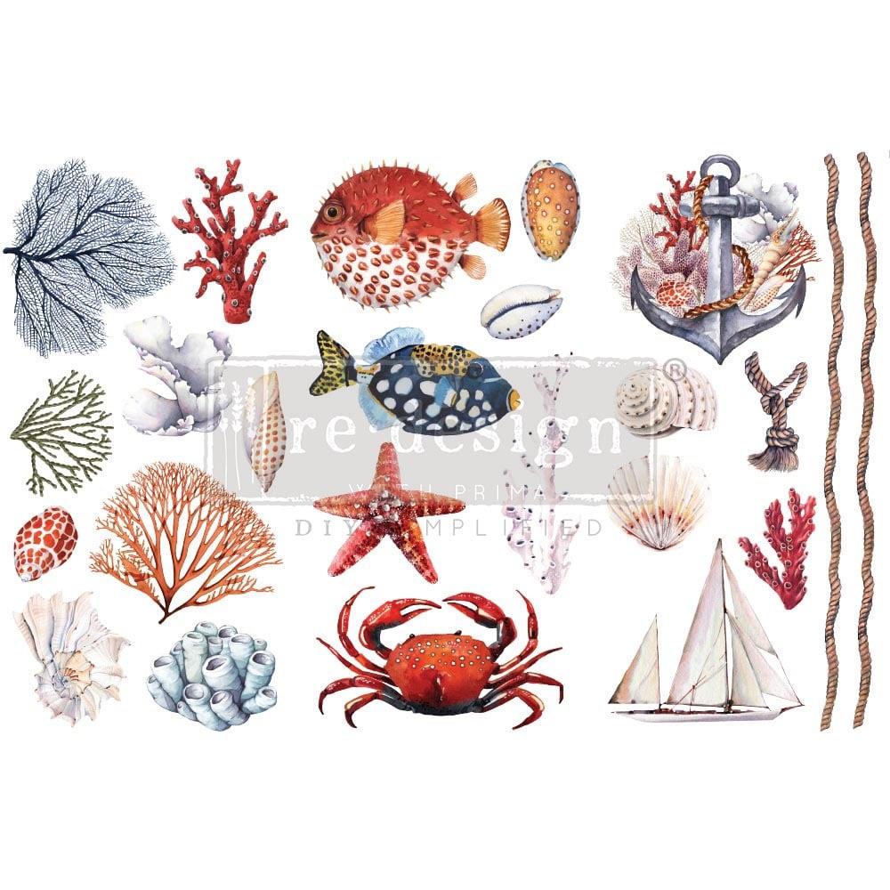 Decor Transfer - Amazing Sea Life (Small)