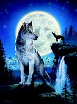 Blue Moon Birthday Card by David Penfold