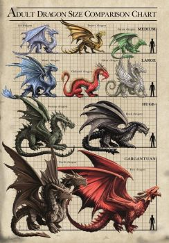Dragon Size Chart Card by Anne Stokes