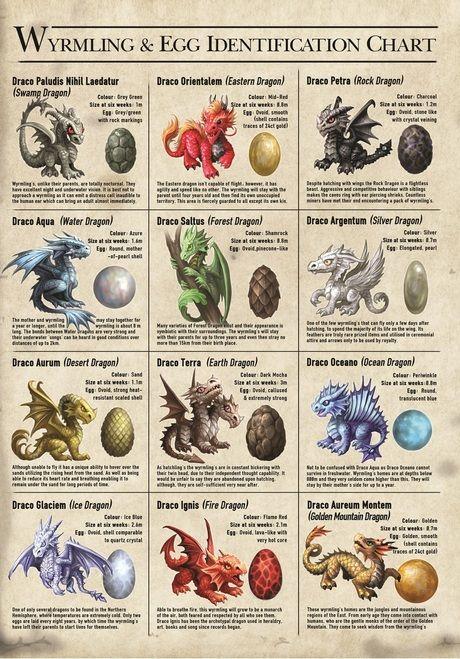 Dragon Wyrmlings Card by Anne Stokes