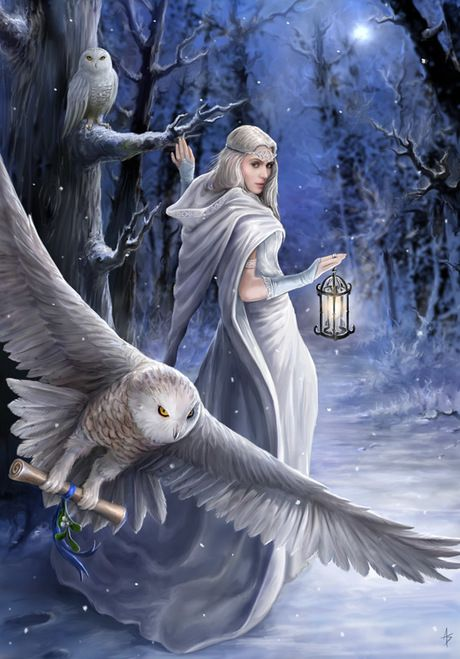 Midnight Messenger Greetings Card by Anne Stokes
