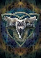 Wolf Trio Greetings Card by Anne Stokes