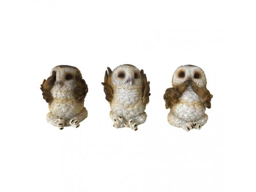 3 Wise Brown Owls