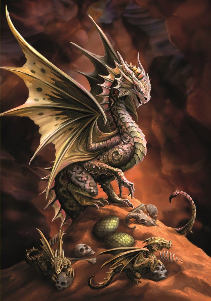 Desert Dragon by Anne Stokes