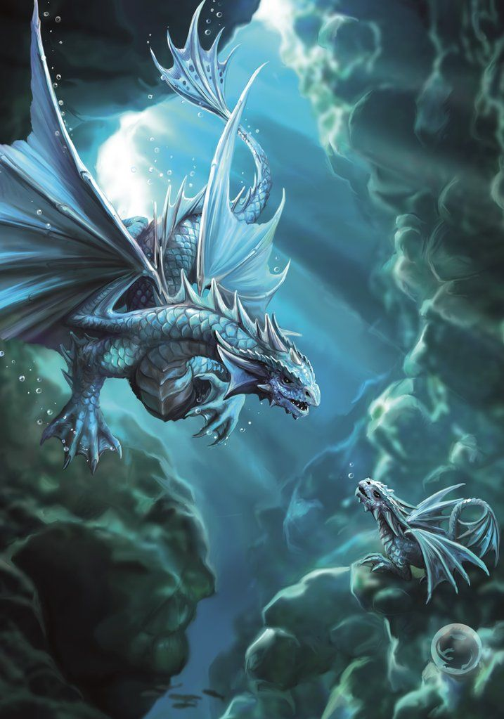 Water Dragon by Anne Stokes