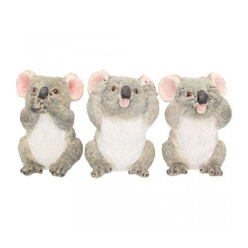 3 Wise Koalas