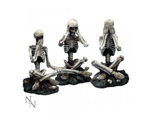 3 Wise Skellies