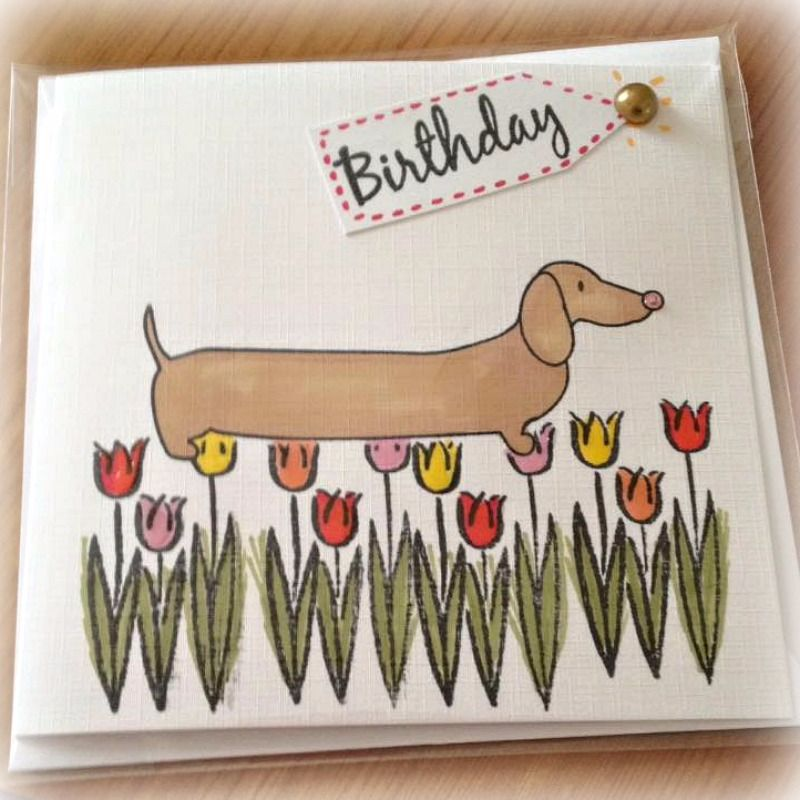 Fee B Cards available at Prima Rosa in Salhouse, Norwich