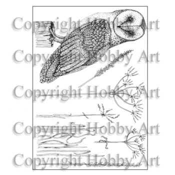 Janie's Collection – Oliver Owl A5 stamp set