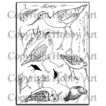 Sharon's Collection – Water's edge A5 stamp set
