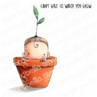 Stamping Bella - Baby - SPROUTED baby in pot