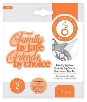 Family by fate friends by choice - Sentiment die set