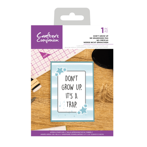 Crafter's Companion Clear Acrylic Stamp - Quirky Sentiment Stamps - Don't G