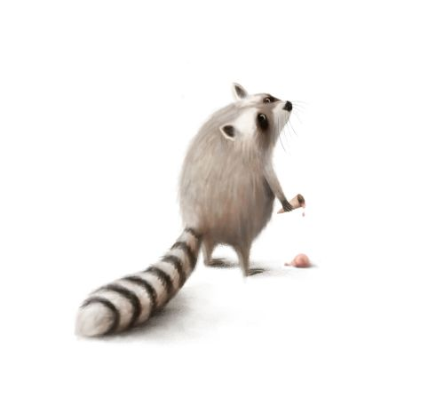 Raccoon and the Bad, Bad Day Card
