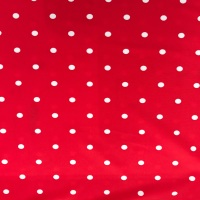 Swimwear Red Dotty