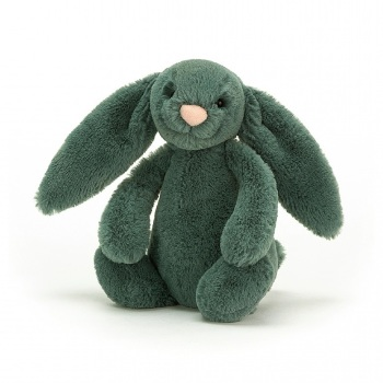 BASHFUL BUNNY FOREST SMALL BASS6FB
