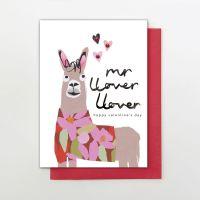 VALENTINE - MR LOVER LOVER HD04