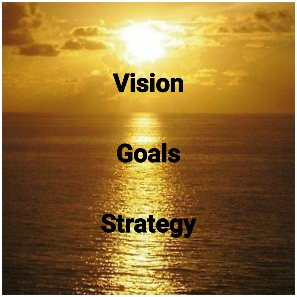 Vision, Goals and Strategy