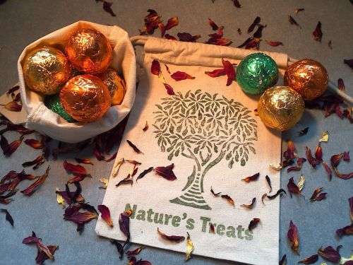Raw Chocolate Truffle Gift Bag