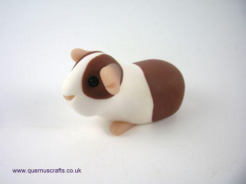 Wee Guinea Pig QL8
