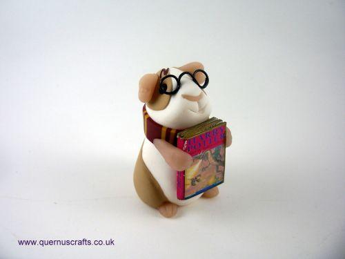 Little Harry Potter Guinea Pig QL8