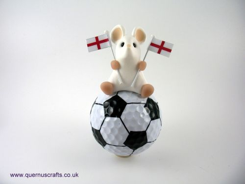 Little England Mouse on Football QL9